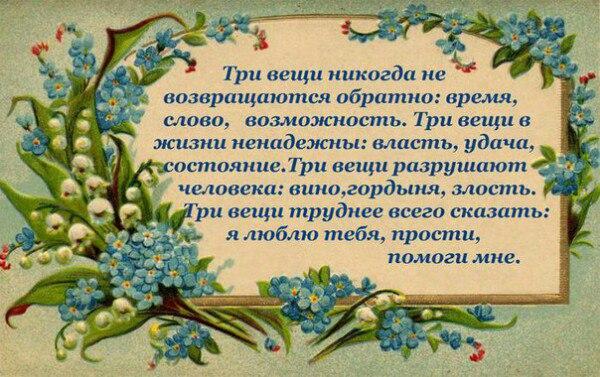 https://pp.vk.me/c637323/v637323689/3c543/Bh9nfDSgdUs.jpg