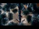 От 290 руб. в Омске! Пушистые Искусственные Елки 🌲Эффектные Сосны 🌲 Новогодние Ели! Инструкция по сборке!