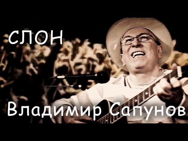 Владимир Сапунов - Слон