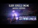 Magicka Sorcerer Pet Build Summoner PvE - Homestead
