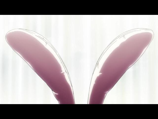 Rabbit shake