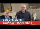 Выборы 2018 кот или бойкот