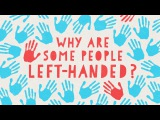 Why are some people left-handed - Daniel M. Abrams