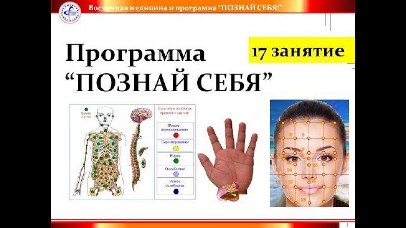 17 Отчет СБА и восточная медицина Примеры