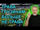 Марихуана и свобода Артемий Троицкий
