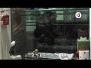 Сериал Гадалка 1 сезон  39 серия — смотреть онлайн видео, бесплатно!