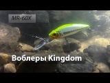 Глубоководные воблеры Kingdom модель MR-60X из Китая. X-TS