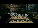 Tom Oberheim Two Voice Pro Excerpt from Yesterday Afternoon