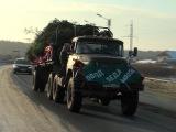 «Поезд Деда мороза» привез в Йошкар-Олу сотни новогодних елочек