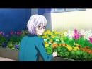 Suki ni Naru Sono Shunkan wo 「AMV」- Shape Of You