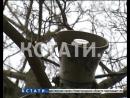 Четвероногая дискриминация - в нижегородский парк запретили вход с собаками