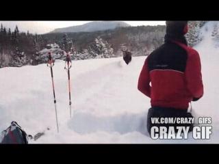Лыжню! Лыжню!