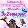 Экзоферма Краснотурьинск