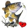 Рыбалка в Кургане - 45 регион
