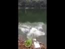 Plié de rire le poisson se fait la Mal avec la cana pêche 😉