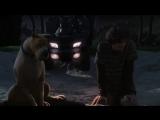 Скуби-Ду 4 Проклятье озерного монстра (2010)