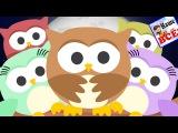 Совушка сова, большая голова. Мульт-песенка потешка видео для детей. Наше всё!