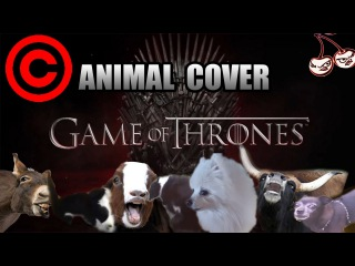 Game Of Thrones Theme (Animal Cover) [REUPLOAD]