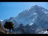 Треккинг к базовому лагерю Эвереста в мае 2016 года