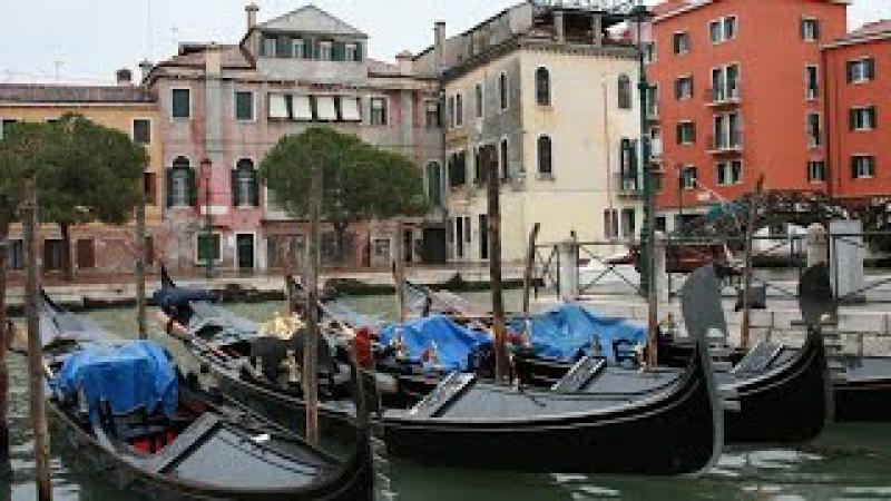 Город живущий двойной жизнью ДИКАЯ ВЕНЕЦИЯ Документальный фильм Wild Venice 2017 hd