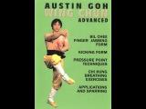 Complete Wing Chun System (Sifu Austin Goh) CLASSIC