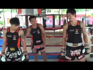 Tiger Muay Thai Techniques_ Jab followed by upwards elbow and leg kick