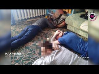 Активисты из Нижневартовска провели рейд в Сургуте