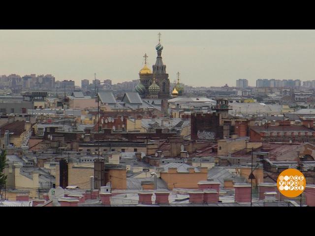 Питерские крыши. 27.07.2017