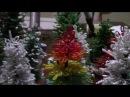 Новогодняя елка. Часть1/2.
