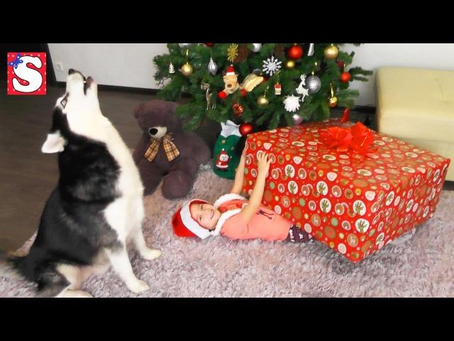 Придавило Подарком Больно упала но не плачет Подарки для Макса и Софии Принцесс ...