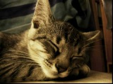 Passion Pit - Sleepyhead (Wallpaper Dio Remix)