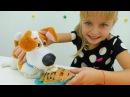 Видео для детей. Плей До и Игрушки из мультфильмов Макс из Тайной жизни домашних животных