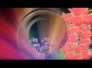 Красивые футажи для видео монтажа Proshow Producer скачать бесплатно