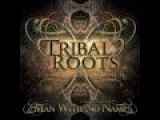 Tribal Roots Vol 2 (Mixed By Man With No Name)