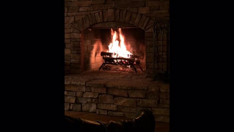 🔥 Lake Lodge Fog Woods 🌲🌲☕️ trees logs owls deers boy water fireplace fire MorningWoods forest MorningFog Georgi