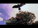 Эволюция Битва за жизнь / Evolve / 2008 / 06. Коммуникация