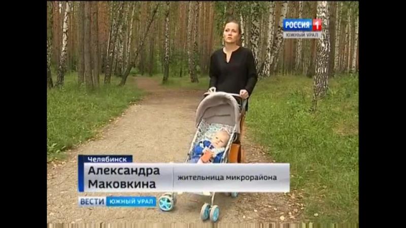 Деревья или парковка Жители защищают участок леса
