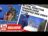 'A Dog's Purpose' Actor, Director Shaken Over Terrified Dog Video | TMZ