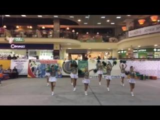 Чемпионат Украины по черлидингу