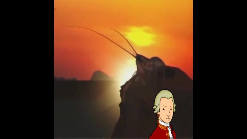Рак на гору свистит под моцарта