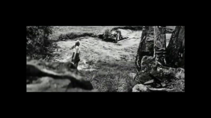Водопад Ахвенкоски и кадры из к_ф А зори здесь тихие