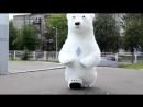 Белый мишка,встреча из роддома Крым +79788587962