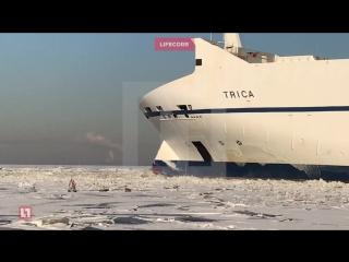 Спасатели уговорили рыбаков сойти со льдины рядом с проходящим мимо танкером