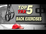 TOP 5 TRX  Back Exercises for Beginner  Bodyweight  Fitness Complex Workout  R