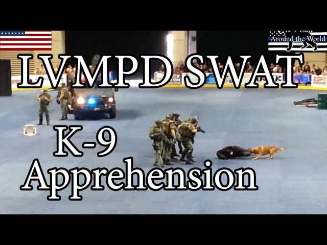 LVMPD SWAT and K-9 Apprehension Demo Show