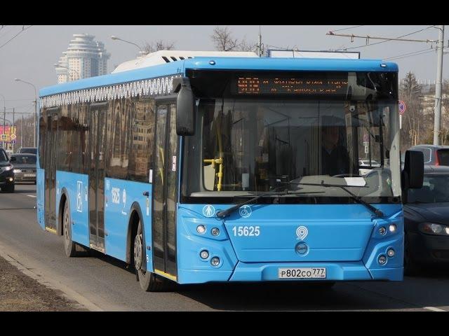 Автобус 908. Метро Филёвский парк - Метро Каширская.