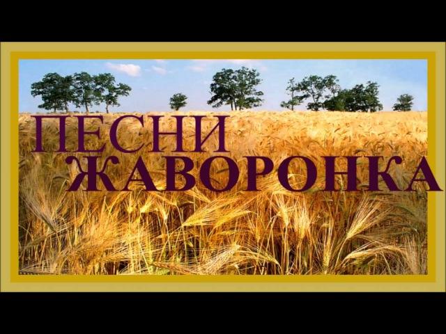 1 ЧАС - Песни Дивных Российских Полей / Russian Skylark Sounds