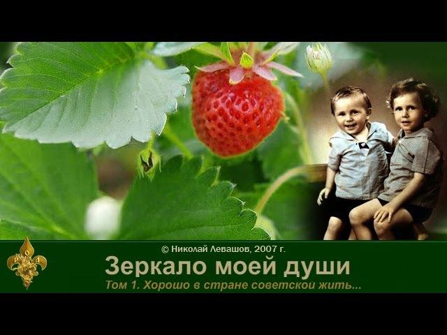 Зеркало моей души. том. 1 Хорошо в стране Советской жить. часть 2