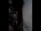 video-2017-01-01-17-08-21