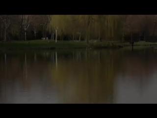 Под животом моста (О.Митяев).mpg